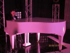 Купить кабинетный рояль в Киеве,концертный рояль в Киеве