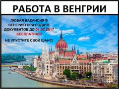 Работа в Венгрии, Работа за границей, Разнорабочие
