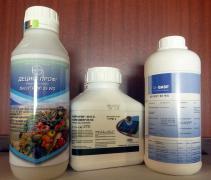 Регент инсектицид для сада и огорода