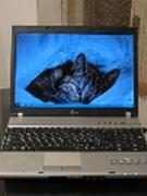 Reliable, well maintained laptop LG F5 (in excellent condition)