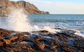 Участок, Море, Крым, Жилье и Бизнес